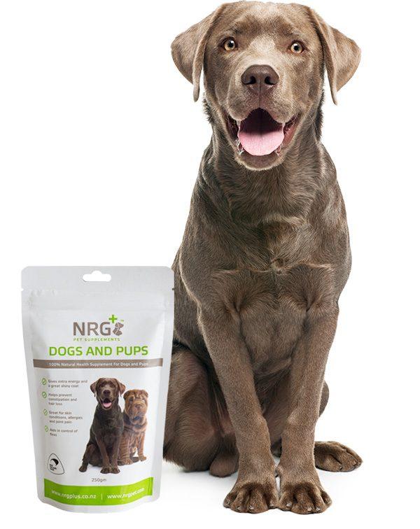 NRG Dog food supplement