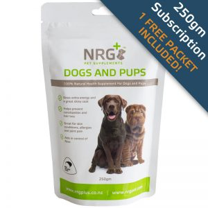 NRG Plus - dogs and pups subscription 250g