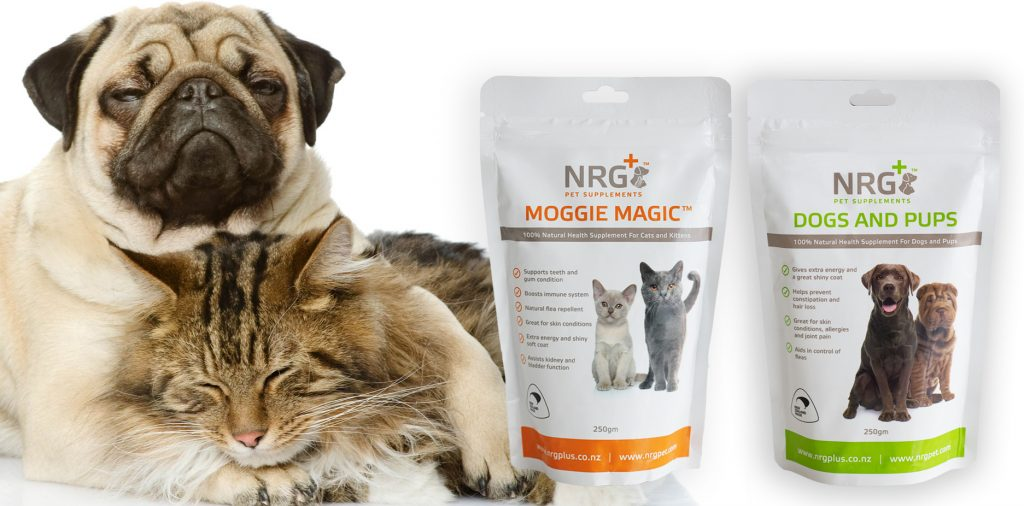 nrg plus pet supplements