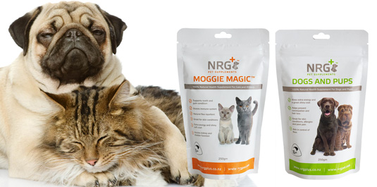 nrg plus dog supplements and cat supplements